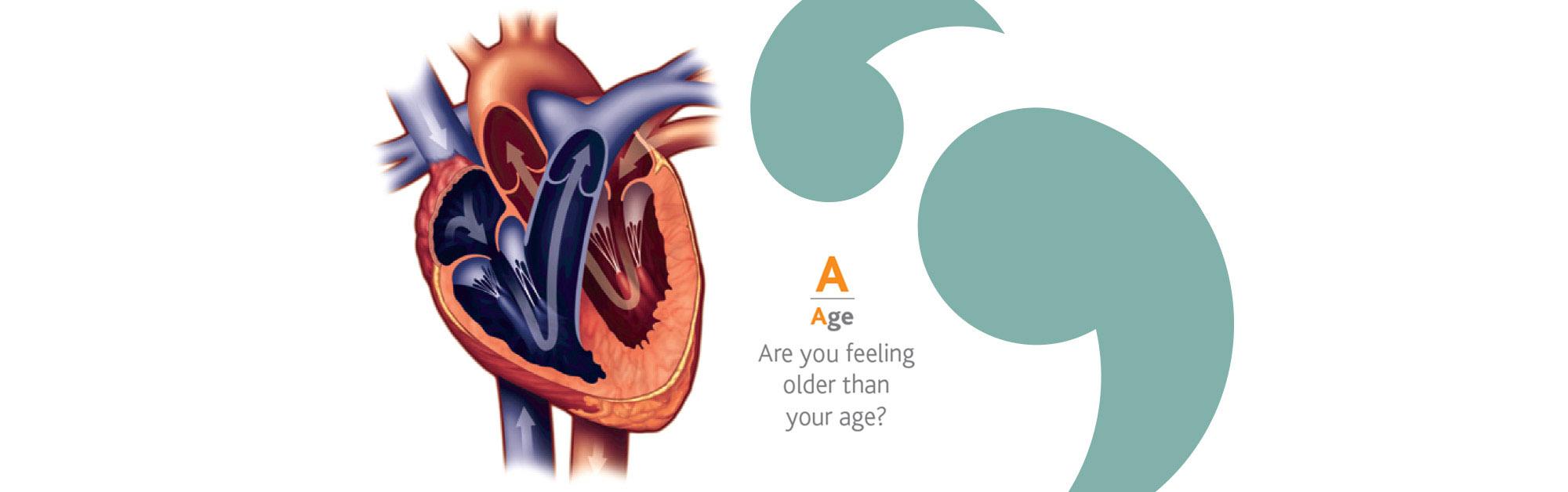 Heart check - A copy 2.jpg